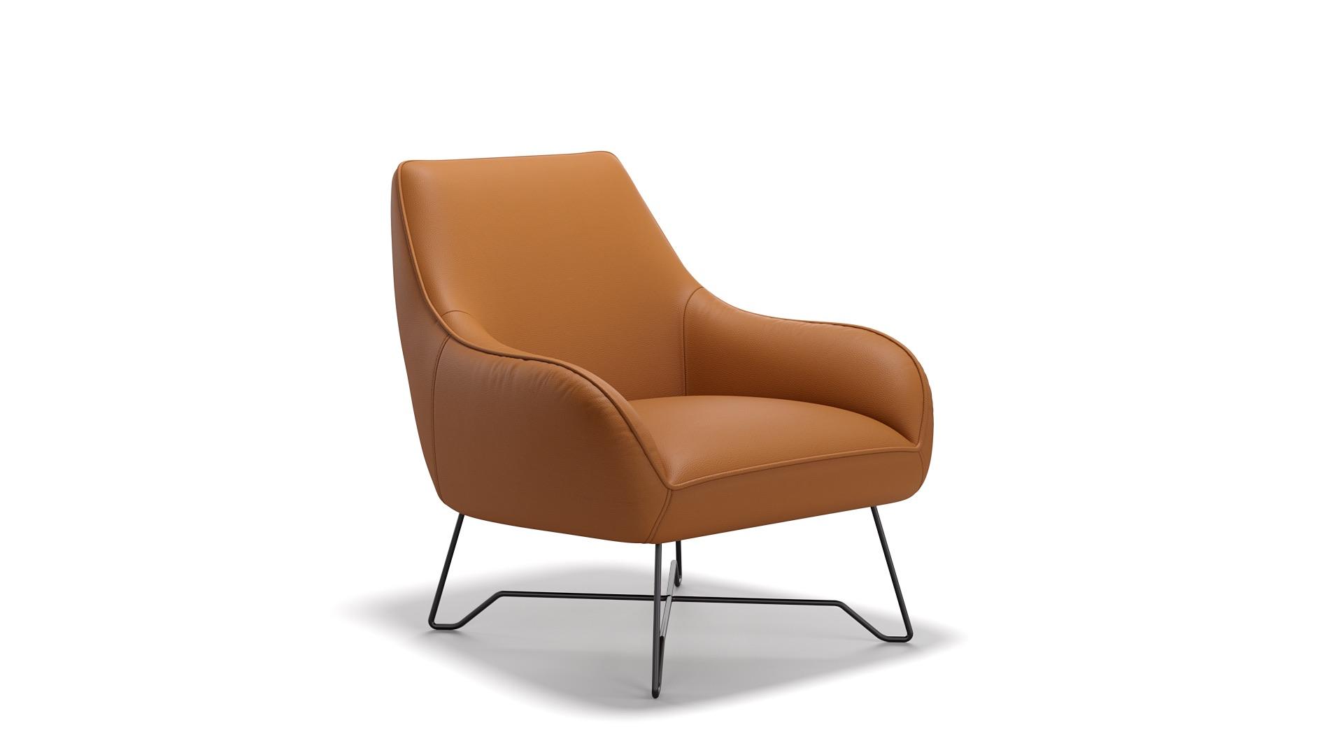 Leder Sessel ROM